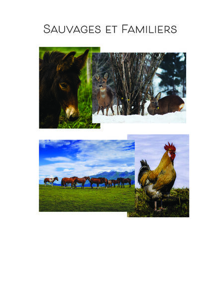 """Exposition """"Sauvages & familiers"""""""