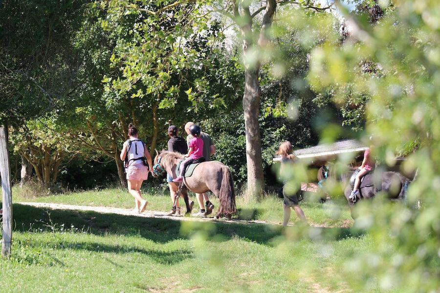 Crok'Nature • Crok'Exploration, balade à pied, à cheval, VTT électriques