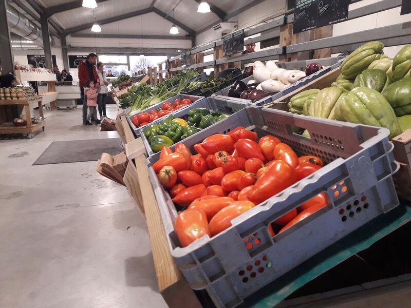Etal fruits et légumes