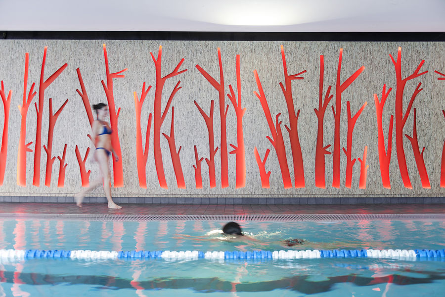 Piscine - Ligne de nage