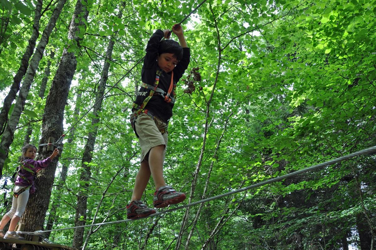 Tree line adventure course Lioran Aventure