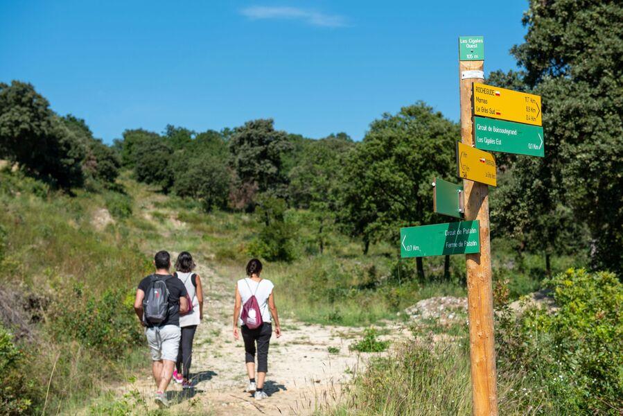 Sentier Les Vachères à Mondragon - Mondragon