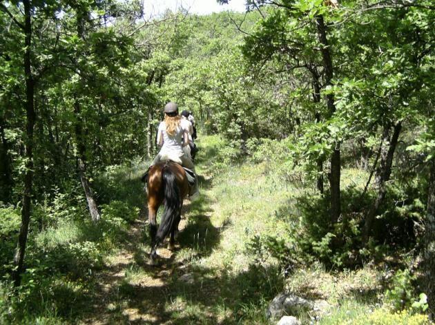 Centre de randonnée équestre Janssaud