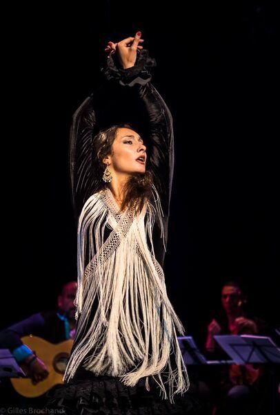 Flamenco Reencuentro