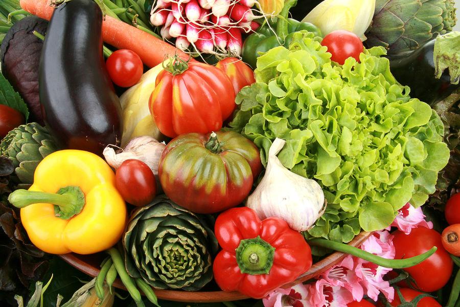 Market gardeners Moutte - Vegetables - Moutte
