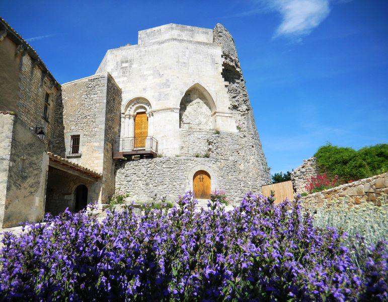 Vue sur le donjon du château depuis la cour castrale transformée en jardin sec