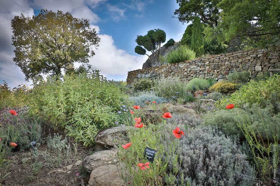 Jardin sec Valsaintes