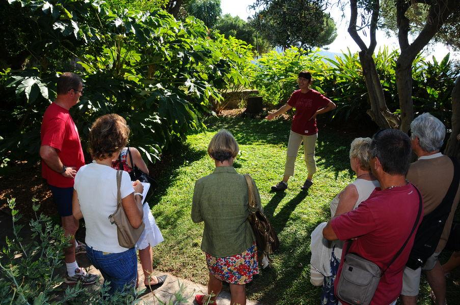 Visite guidée botanique de Bormes-les-Mimosas