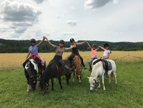 Initiation au poney