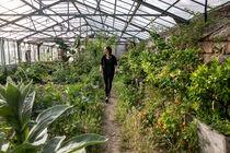 Visite guidée des jardins de Terre & Humanisme - Lablachère