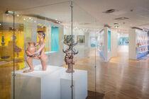 Espace d'Arts moderne et contemporain Edith Allard