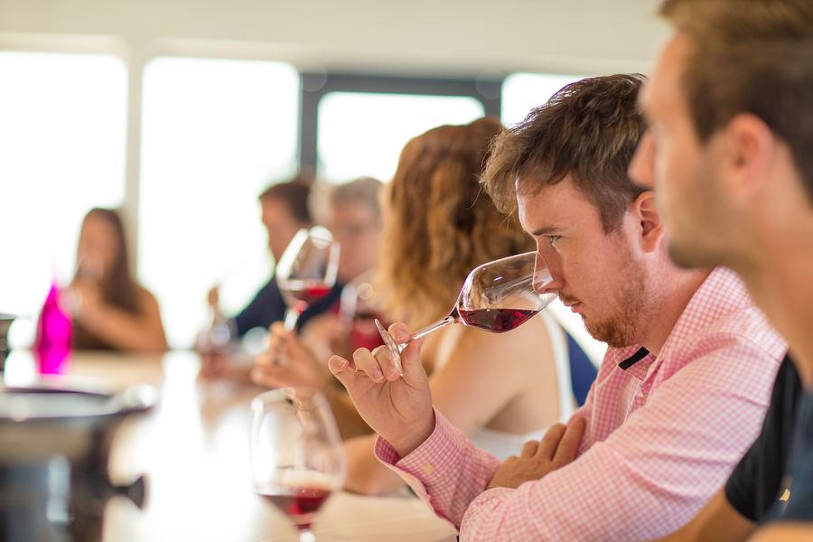 Néovinum : une immersion unique dans lunivers des vins dArdèche !
