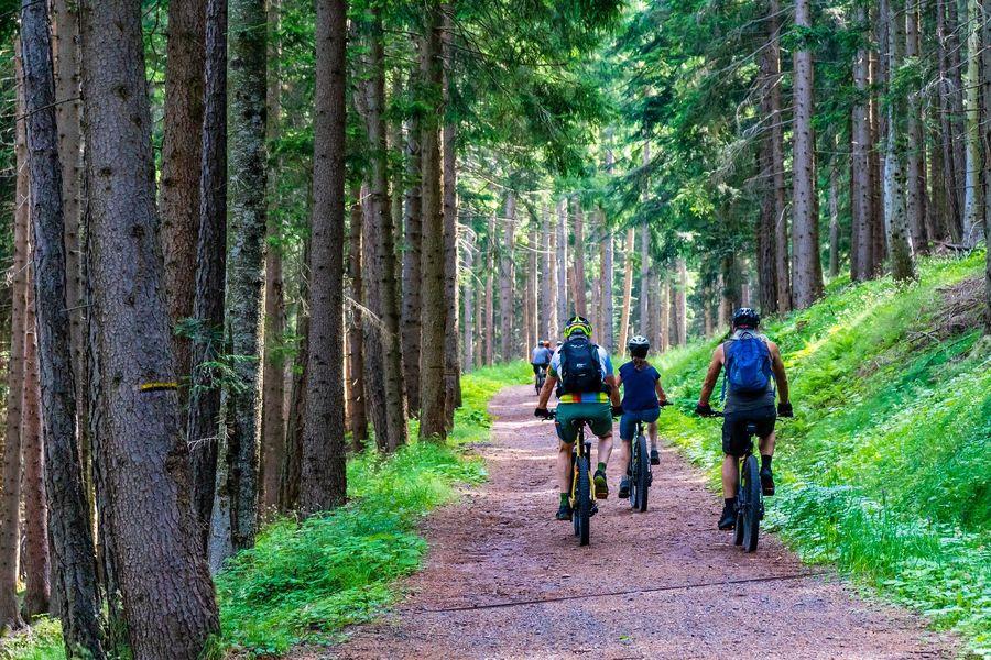 Tour VTT de la Haute Vallée du Thoré