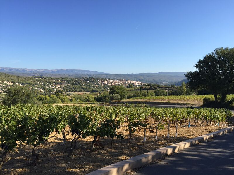Balade Fontanieu-Pibarnon-St Côme - Vue vignoble et village - Sophie Delsanti