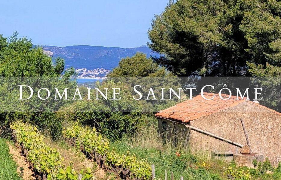 Domaine St Côme - Vue Vignes et Mer - Joël Poutet