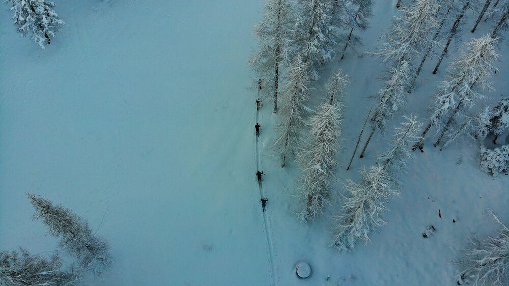 PACK TRACE (Collectif ski de randonnée, splitboard et raquettes)