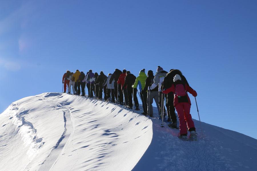 Guided ski touring