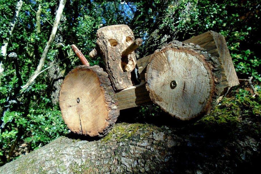 La Forêt dEmile Zarbre