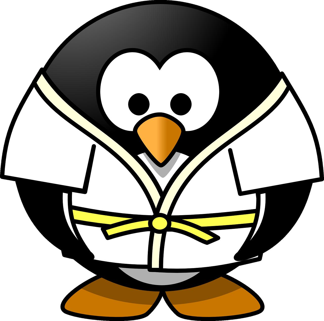 Tournoi de judo
