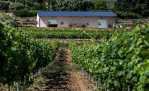 Lire entre les vignes - Vinezac