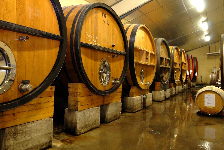 Suffrène's vineyard - Cellars - Cédric Gravier