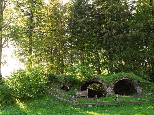 Ruines Chartreuse de Prémol