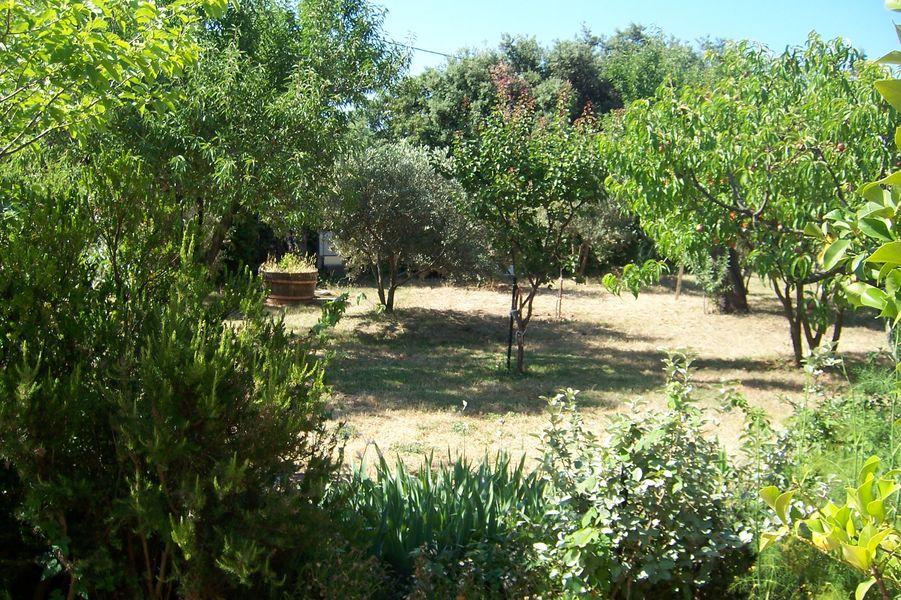 Garden - Garden - M. Dessolis