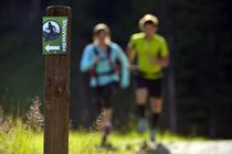 Trail vert de l'Hermine