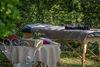 Gite Bien être du Mont Plaisir à Chouvigny Ⓒ Gite Bien être du Mont Plaisir à Chouvigny