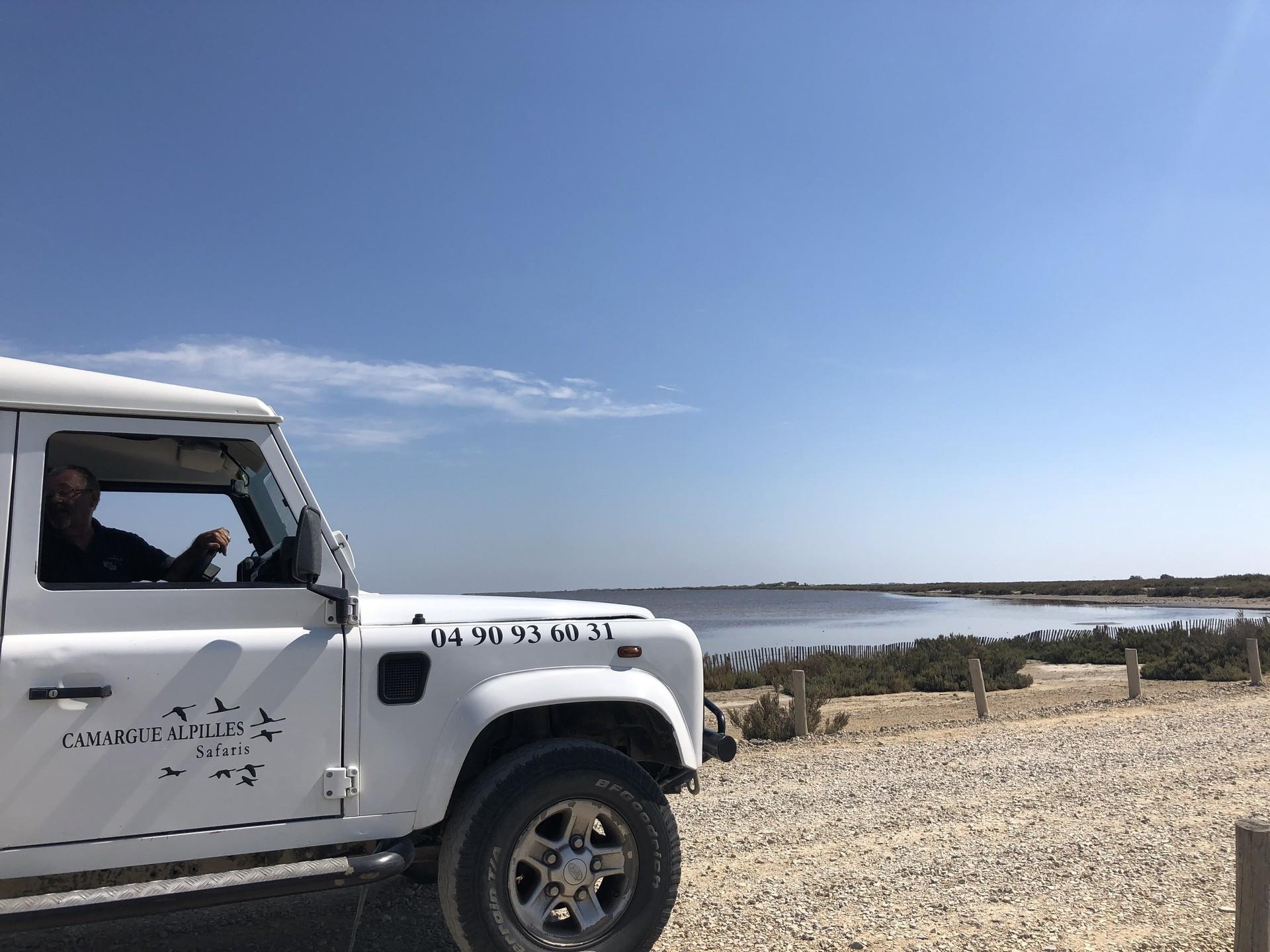 camargue-safari
