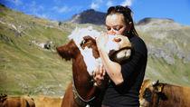 Alpage du Clou