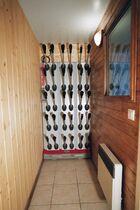 Ski boot drier