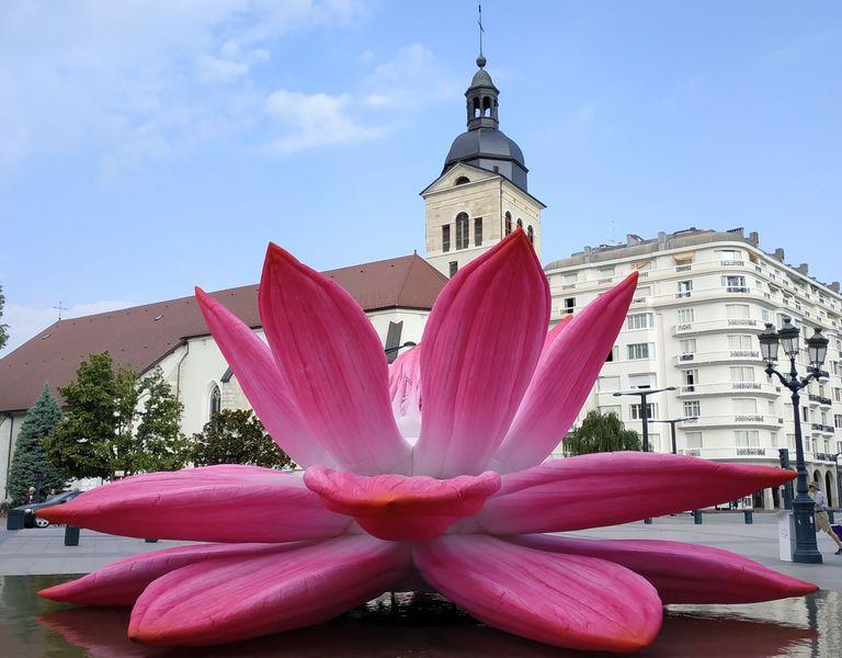 Annecy fleur parvis hôtel de ville