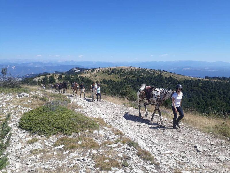Randonnées accompagnées à cheval