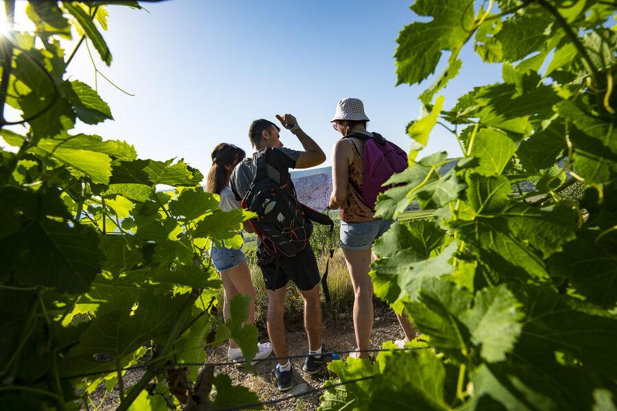 Fascinant week end Vignobles & découvertes à Valvignères