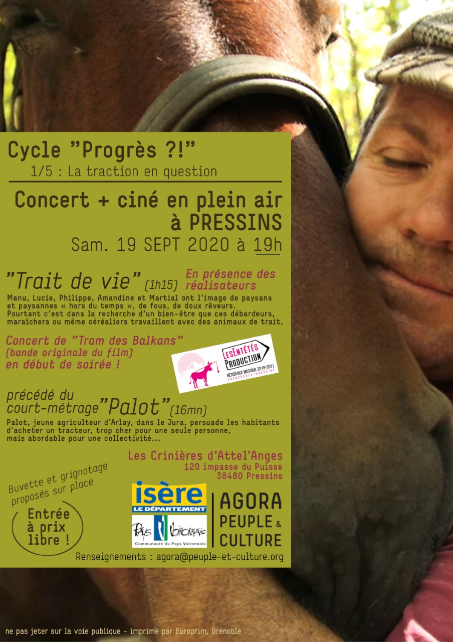 Concert + Cinéma plein air