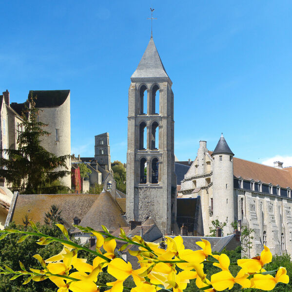 Visite commentée de la cité médiévale Château-Landon