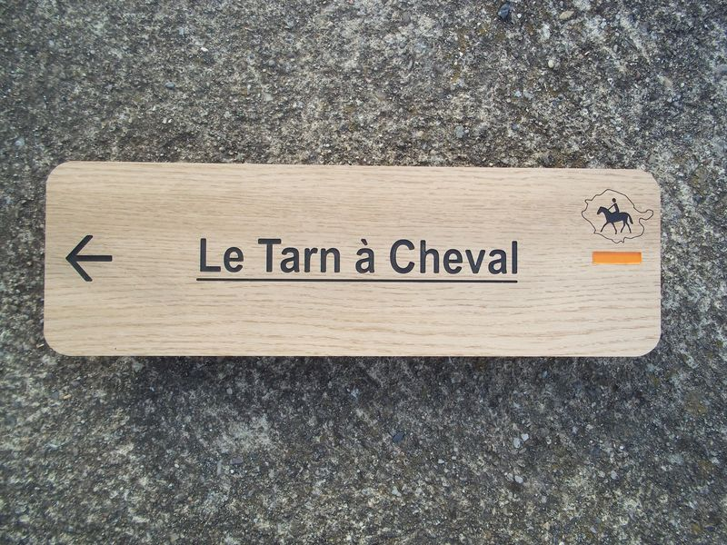 Tour du Tarn à cheval