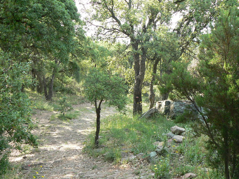 Randonnée Le Tour de la Berle et le Breganconnet