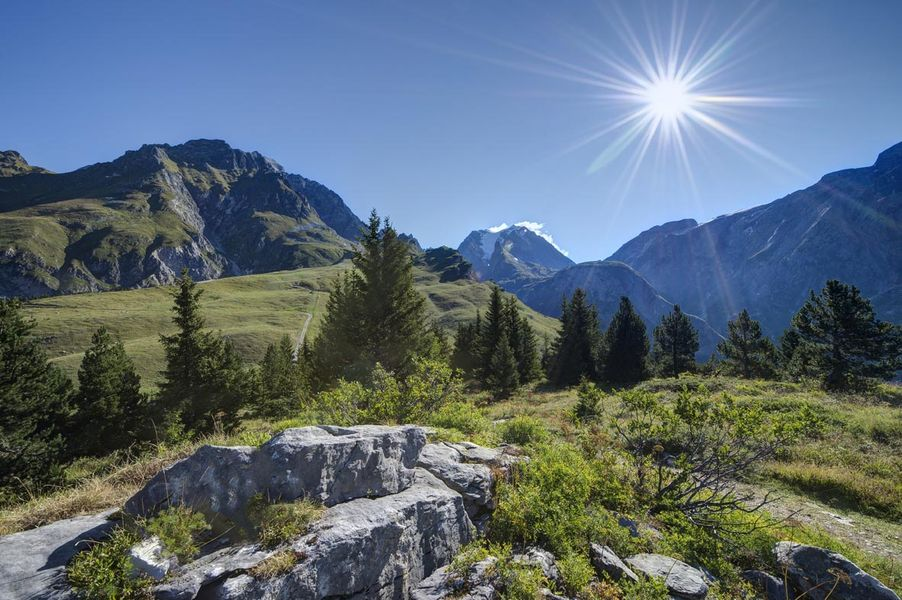 Sentier découverte du Mont Bochor