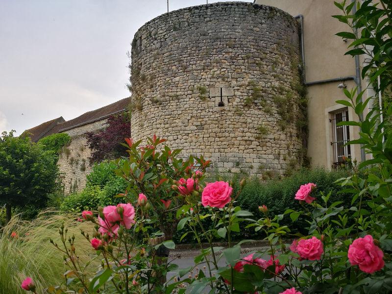 Tour Madeleine et ses remparts Château-Landon