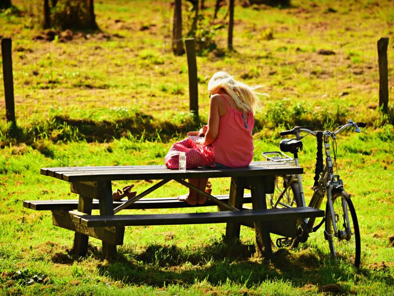 Fille assise sur une table de pique nique