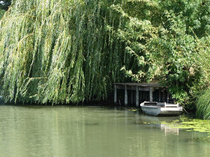 Barque à Taugon