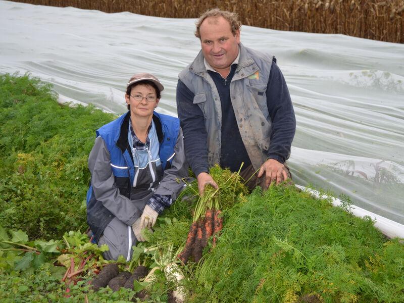 Marie-Line et Francky, producteurs de légumes