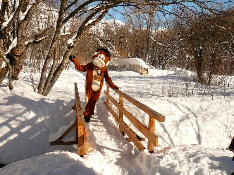 Snowshoes (in autonomy) – Sorlinette track