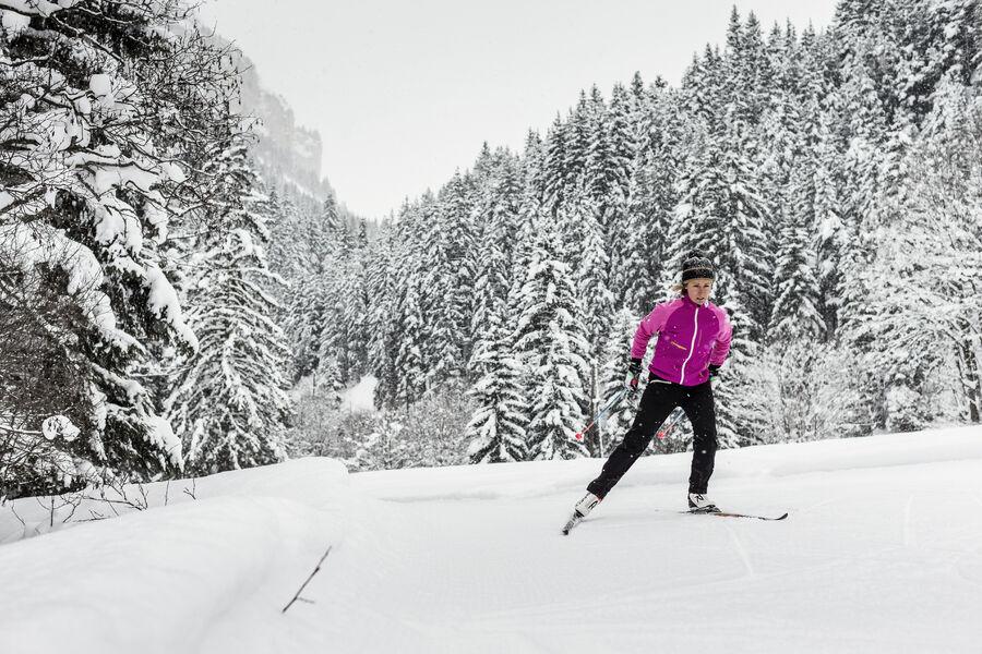 Cours collectifs de ski nordique