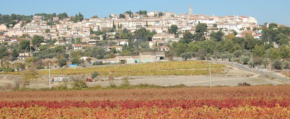 La Cadière d'Azur - Vue village et vignoble - Sylvain Alberto