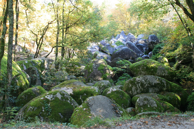 La rivière de Rocher_Sidobre