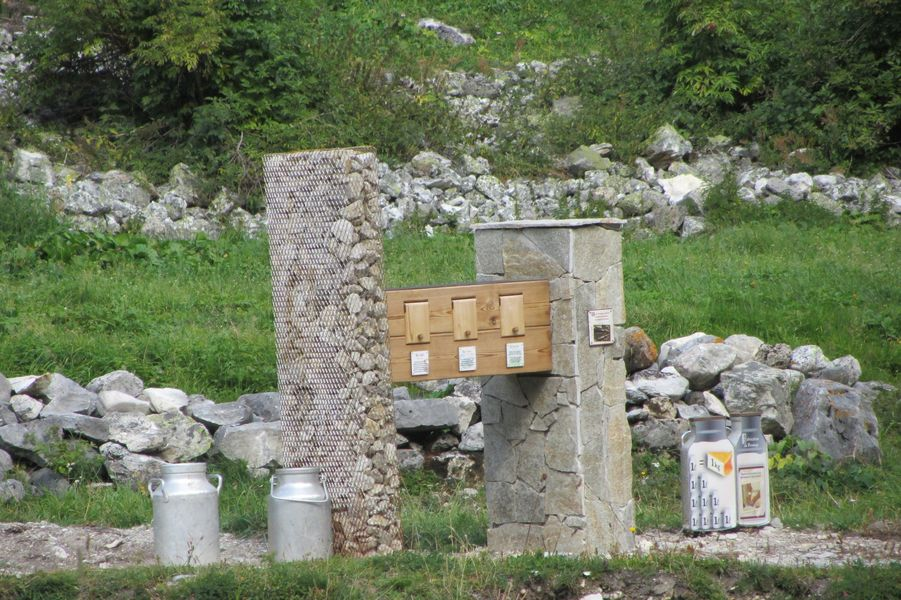 Promenade Savoyarde de découverte  des Prioux (PSD)
