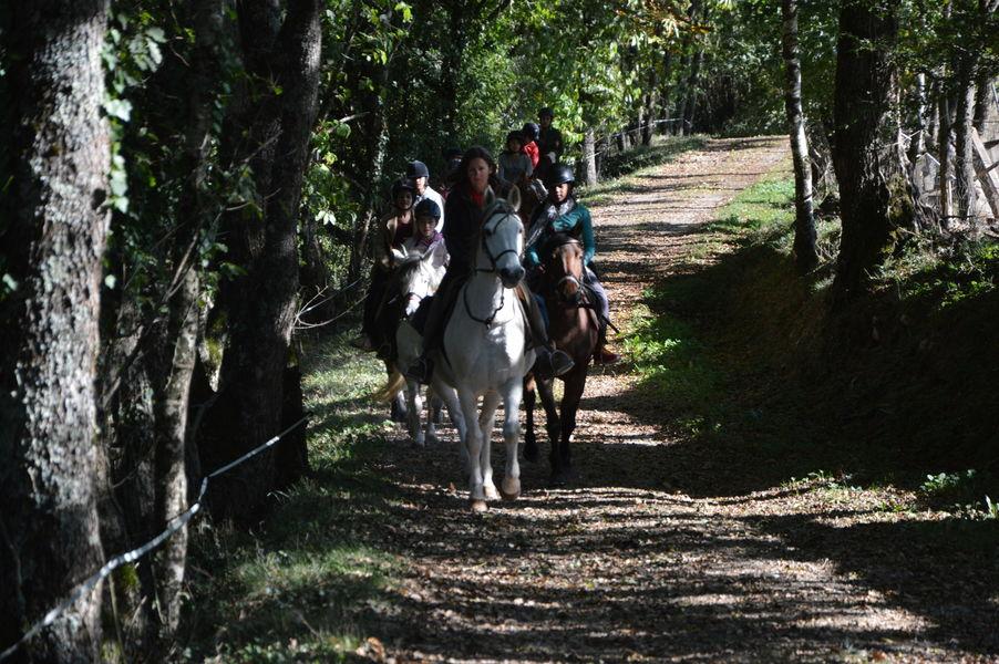 The Grésigne Equestrian Farm